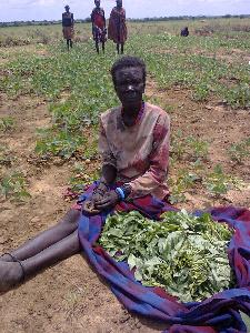 uganda tracker